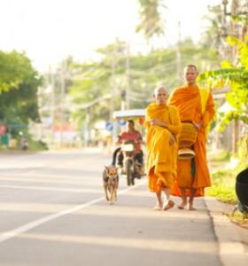 Норми в храните давани на будистките монаси