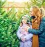 Елхата може да предизвика алергия
