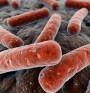 Задава се нова криза на антибиотичната резистентност
