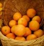 Скорбут - хроничната липса на витамин С
