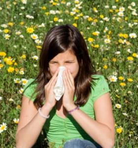 Създадена е Първа Европейска карта на алергените