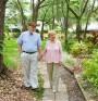 Медта отключва развитието на Алцхаймер