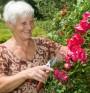 Градинарството удължава живота