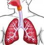 Белодробна актиномикоза се разпознава по фистулите