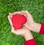 Сърцето страда – още една причина и начин да му повлияем?