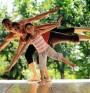 Какви са полезните упражнения за крайниците? (видео)