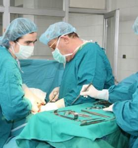 Три нови трансплантации за тази година