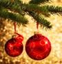 """""""Българската Коледа"""" - в помощ на децата с вродени заболявания"""