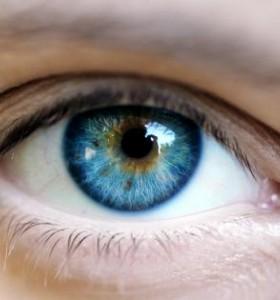 Дванайсет мита за полезното и вредното за очите