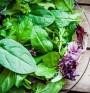 Листни зеленчуци – за здрав ум и фина фигура