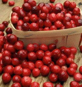 Червените боровинки - мощен антиоксидант