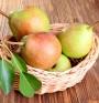 Ябълки и круши – как правилно да се съхраняват?