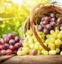 Как правилно да съхраняваме различните плодове?
