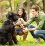 Живей активно и със своето куче!