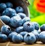 Суперхрани: горски плодове и соя