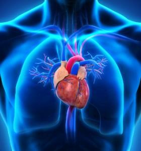 Исхемична болест на сърцето - какво се крие зад тази диагноза?