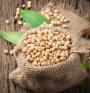 Соя – източник на качествени протеини
