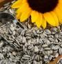 Омега-6 мастни киселини – 4 ценни ползи