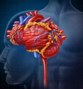 Концепция Бобат за лечение на увреди на централна нервна система при възрастни
