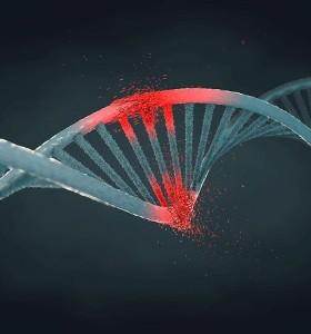Увреждания на ДНК - депуринизация, деаминизация