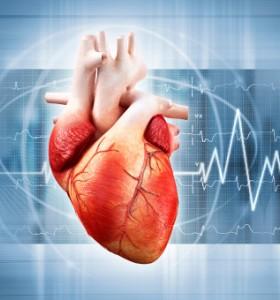 Генетични болести с висок риск за сърцето