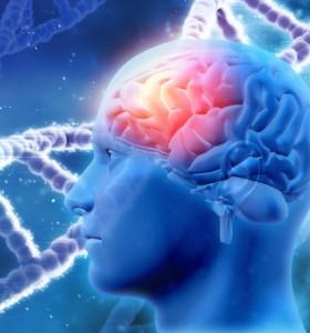 Молекули: Грипните вируси увреждат умствените способности?