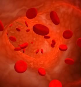 Тромбоцити и кръвосъсирване