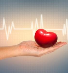 Транспортираха донор на органи със самолет