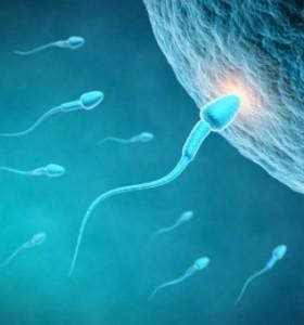 Безплодие при мъжа – какви са причините?
