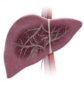Инхибитори на протонната помпа – опасни за черния дроб