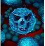 Бактериален секс води до антибиотичната резистентност