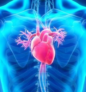 Миокарден инфаркт - какво следва?