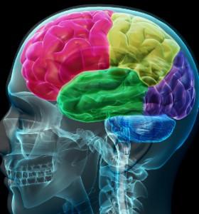 Откриха мозъчния механизъм за никотинова зависимост