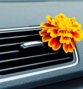 Колко опасни са ароматизаторите за кола?