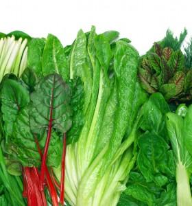 Комбиниране на храни – зеленчуци, които вървят с всичко