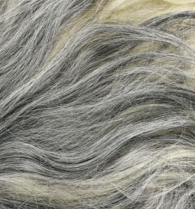 Най-честите причини за побеляване на косата