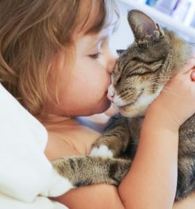 6 опасни болести, предаващи се от животни на хора