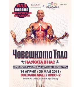 Удивителна образователна изложба с истински човешки тела гостува в София от 14 април до 30 май