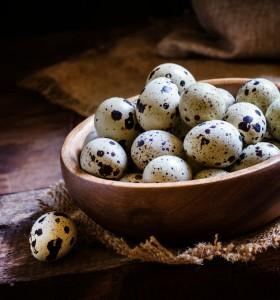 5 полезни свойства на пъдпъдъчите яйца