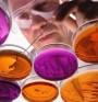 Вирусите ни предпазват алергии