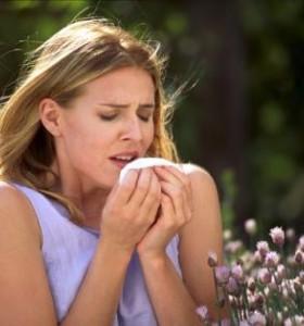 диета имбирь для похудения отзывы
