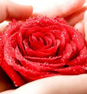 Хемороиди – защо се появяват? (І част)