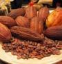 """Какаото понижава нивото на """"лошия"""" холестерол"""