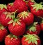 Ягодите имат протективен ефект срещу рак?!