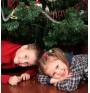 Коледната елха може да причини респираторни алергии