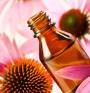 Сок от ехинацея - естествена природна ваксина срещу грип