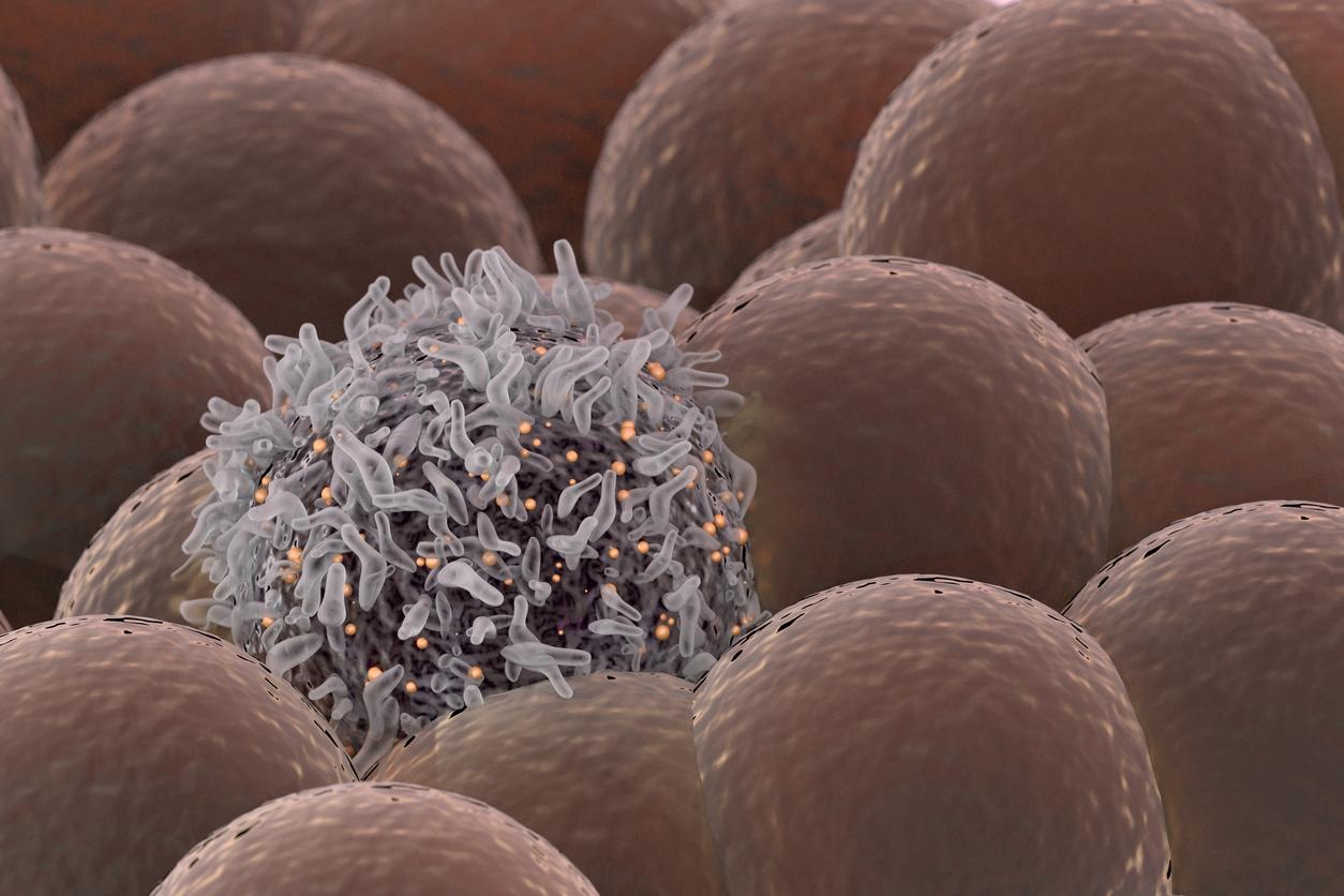 Инфекциите са обичайни състояния сред популациите, ето защо е неизбежно