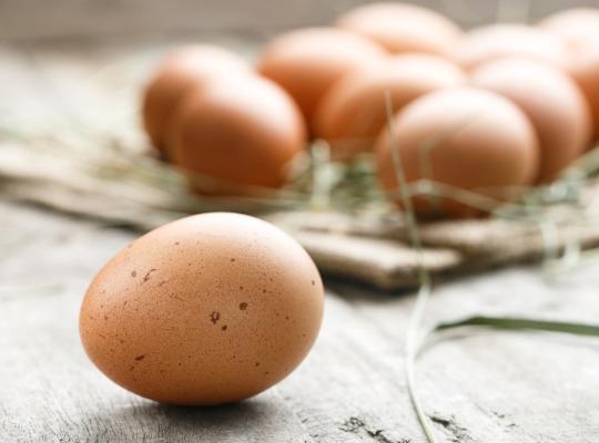 източник: 1. Съдържат витамини и минерали Яйцата са естествен източник