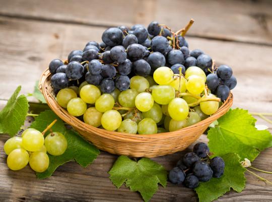 Снимка: Екстрактът от гроздови семена – мощно средство срещу рак