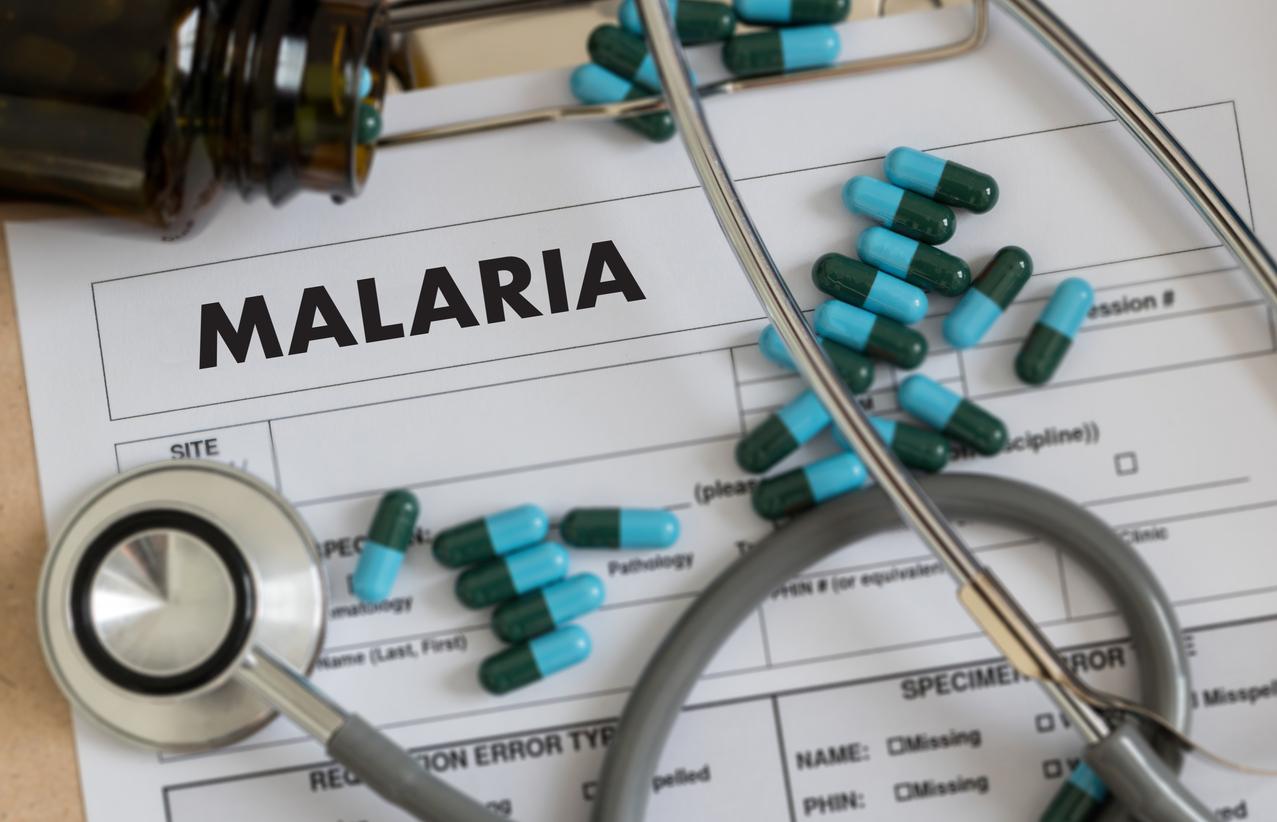 Маларията е протозойна инфекция, която се причинява от четири вида